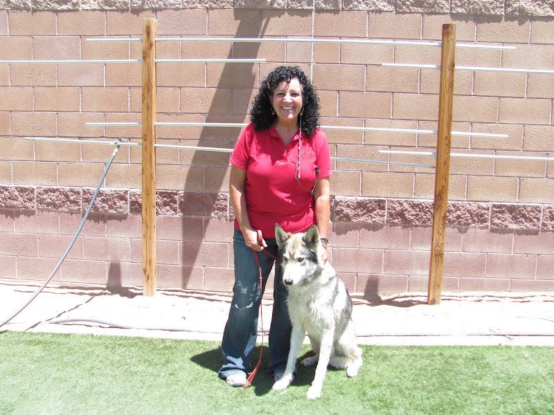 Photo: Dorothy and Koda celebrate Take Your Dog to Work Week.