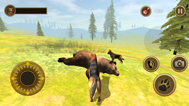 Wild Dog Survival Simulator