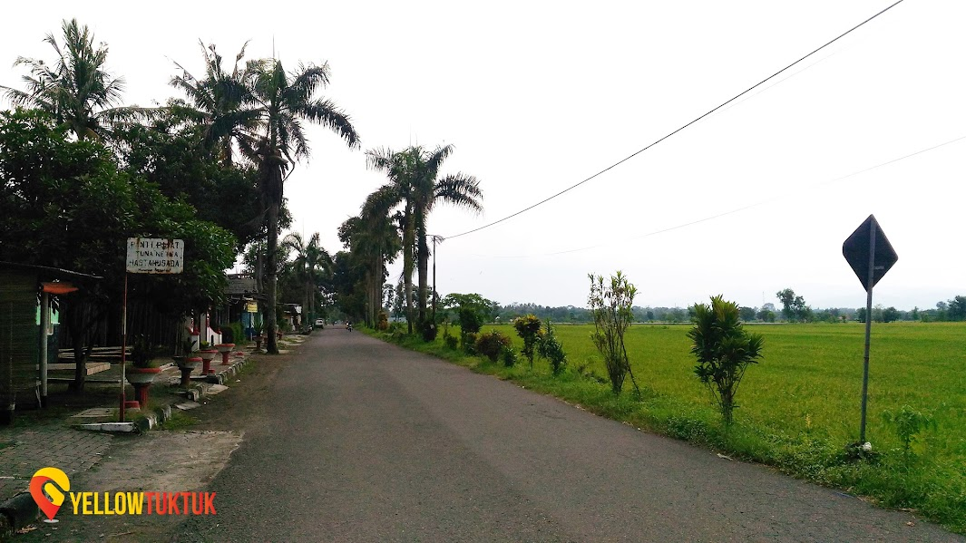 road leading to plaosan temple