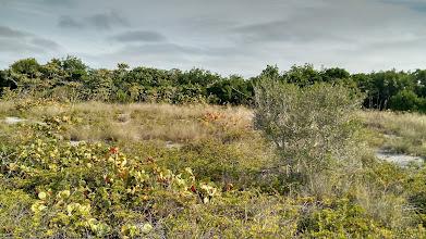 Photo: San Pedro State Park