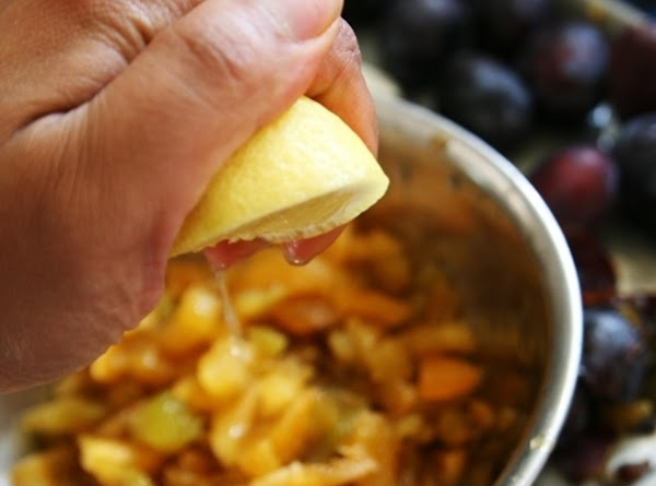 Place plums, water, and lemon juice in a large non-aluminum stockpot. Stirring often, bring...