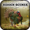 Hidden Scenes - Turkey Trot icon
