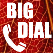 Big Phone Dialer & Contacts