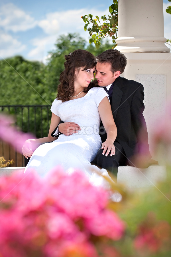 by Melissa Papaj - Wedding Bride & Groom ( wedding, denver, colorado, lds temple, marriage, utah wedding photographer )