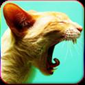 Kedi Sesleri icon