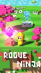 Rogue Ninja v1.0.2 Unlocked