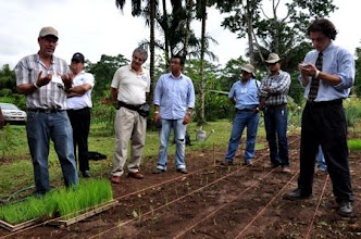 Photo: Oscar Montero explaining nursery management under mechanized conditions [photo by Erika Styger]