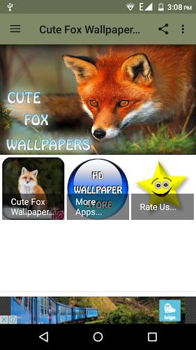 Unduh 60+ Wallpaper Lucu Fox HD Terbaru