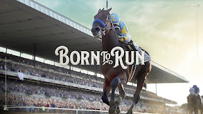American Pharoah: Born to Run thumbnail