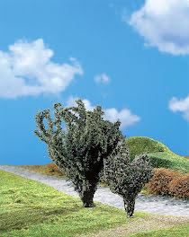 181339 PREMIUM Idegran + fläderträd