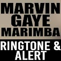 Marvin Gaye Marimba Ringtone icon