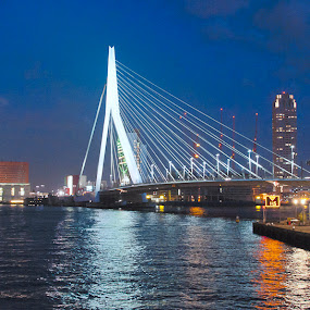 The Erasmusbrug.. . by Steve Albano - Buildings & Architecture Bridges & Suspended Structures