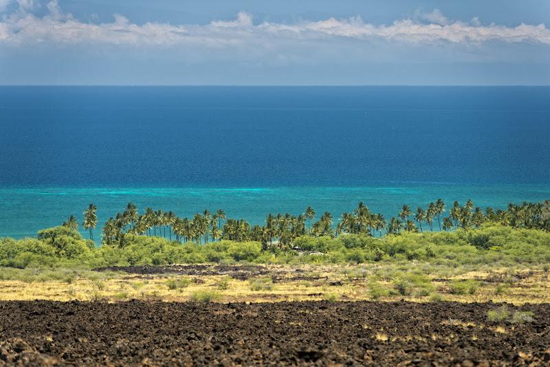 Hawaii di Andrea Izzotti