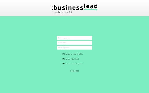 Business Lead screenshot 5
