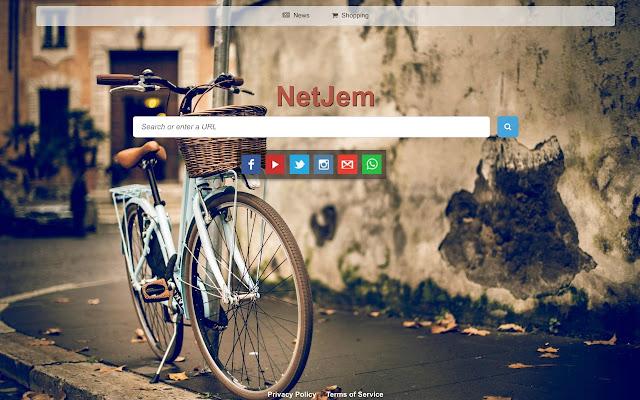 NetJem -Custom Web Search