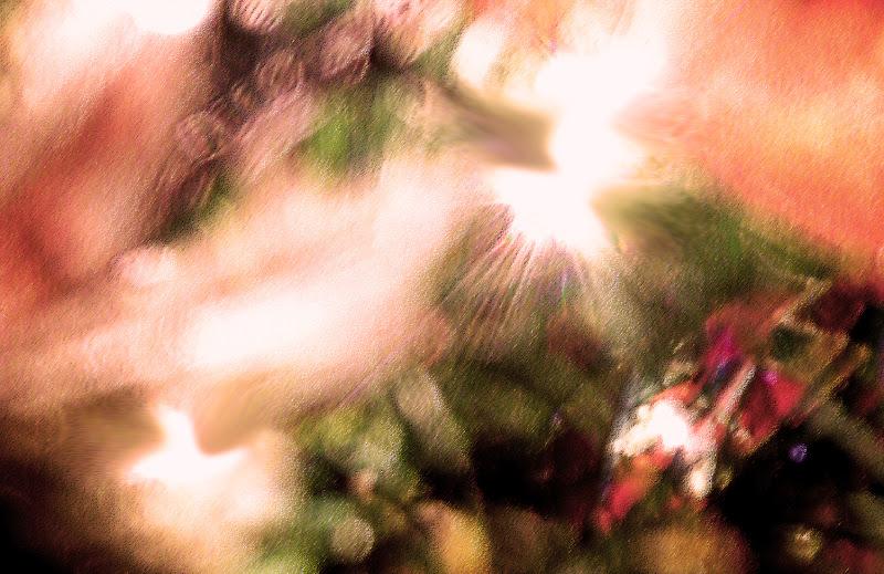 Natale di Barbara Licata