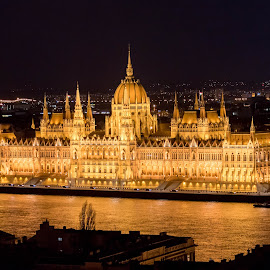 Budapest Parliament Building #2 by Tomasz Karasek - Buildings & Architecture Public & Historical ( night, danube, budapest, river, parliament, lights )