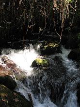 Photo: Petites chutes du Jourdain à Banyas