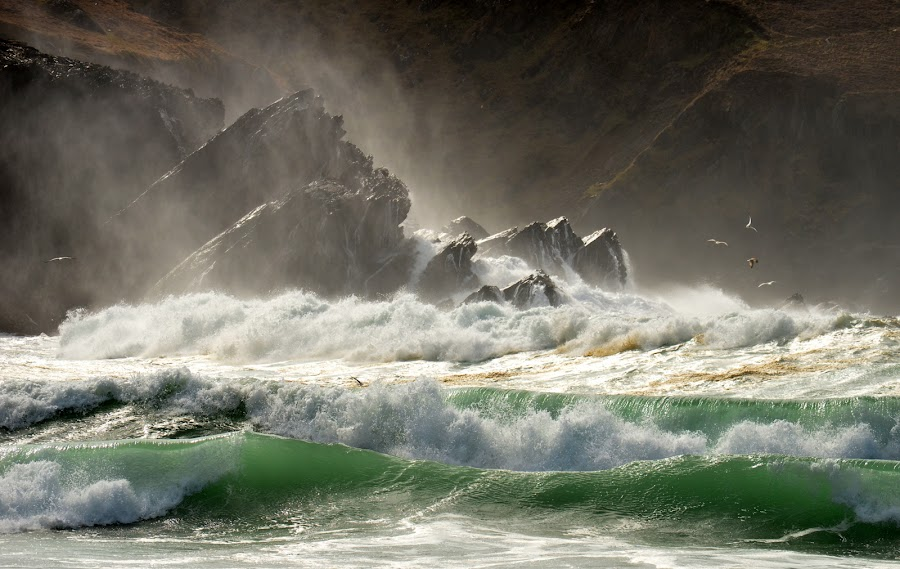 Emerald waves by Barbara Walsh - Landscapes Waterscapes ( water, wild, ireland, wave, weather, seagulls, sea, wild atlantic way, beach, birds,  )