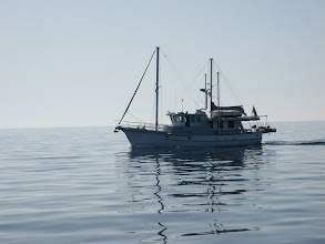 Photo: Argos on painted ocean