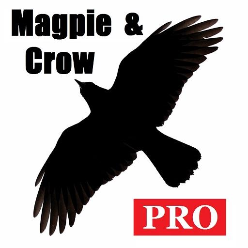 Magpie & Crow Calls PRO LOGO-APP點子