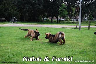 Photo: Spel tussen broer en zus