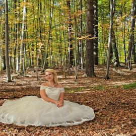 The autumn by Comsa Bogdan - Wedding Bride ( beautiful women, beautiful, forest, romania, fun, enjoy, beauty, women, beautiful brides, autumn, gorgeous, comsa bogdan, she, bride )