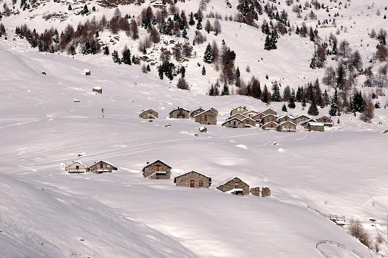 Bianco di montagna di benny48