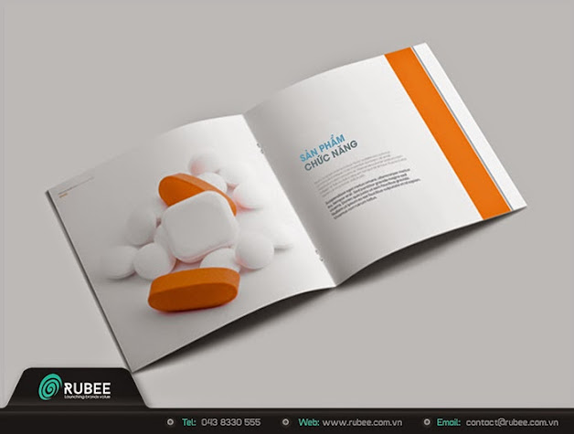 Brochure 3 đẹp