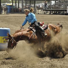 bite de dust by Jean-Pierre Machet - Sports & Fitness Rodeo/Bull Riding ( barrel compéririon, horse riding, rodéo,  )