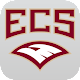 ECS Eagles Download on Windows