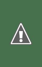 Photo: Scenter (4 weken oud)