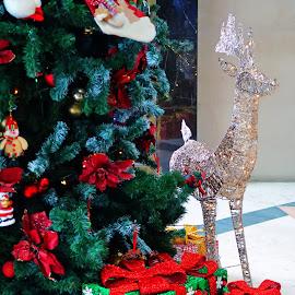 by J W - Public Holidays Christmas
