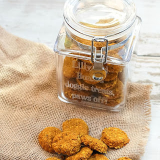 Homemade Turmeric and Fish Gourmet Dog Treats