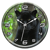 Black Panther Clock Live WP