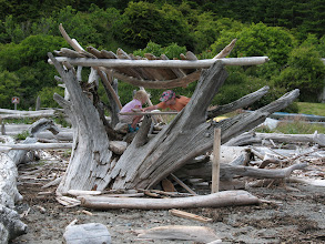Photo: Day 4: Back of the driftwood storefront at Spencer's Spit state park.
