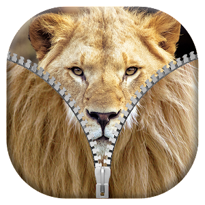 Lion Zipper Lock Screen Lion Wallpaper For Zipper Screen Lock Get