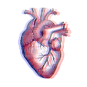 heart_asmr