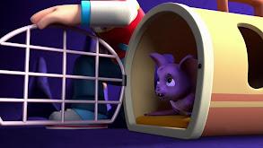 Pups Save a Bat; Pups Save a Toof thumbnail