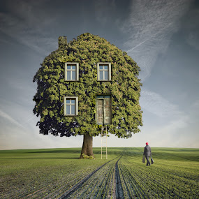Way back Home by Dariusz Klimczak - Digital Art Places ( home, tree, woman, square, house, road, surreal, landscape )