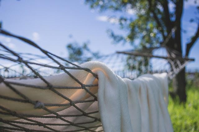 gérmenes en toallas
