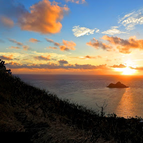 Pill box sunrise by Leimaile Guerrero - Landscapes Sunsets & Sunrises ( islandlife, islands, sunrise, pillbox, mokuluas, hawaiiansunrise, hawaii, tropical sunrise )