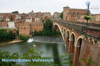 terrain à Montesquieu-Volvestre (31)