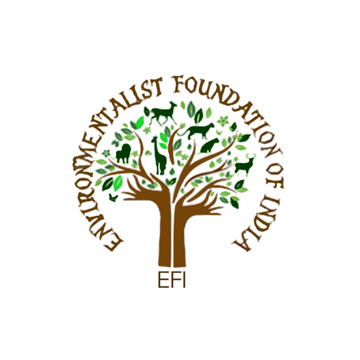 EFI Volunteer