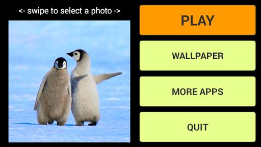 Penguins LWP + Puzzle