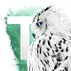 Tribal Engage WBL Dev Download on Windows