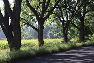 """Photo: a view from one of wisconsin's many """"rustic roads""""."""