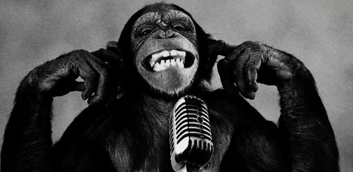 Descargar Monkey Wallpaper Hd Para Pc Gratis última