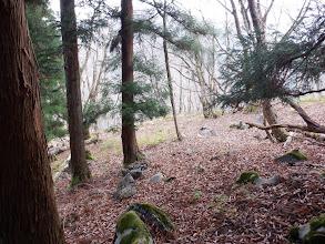 暫くは藪を避け、適当なところで左斜面を下る