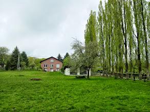 Photo: Einsame Kutsche unter einem Obstbaum am Seitenzweig (gen Norden) der Straße ;Auf der Halle'.